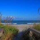 Way to the beach by Susanne Van Hulst