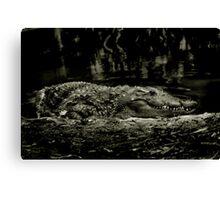 Gator Grin Canvas Print