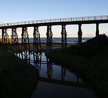 kilcunda bridge. gippsland - victoria by tim buckley | bodhiimages