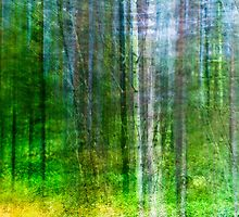 Mixed forest paint by natans