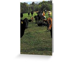 Don't try this at home..cow tipping..☺ Greeting Card