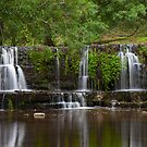 Waterfall, Lofthouse. by Nick Atkin