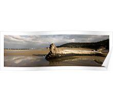 Kennett River - Great Ocean Road Poster