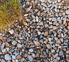 Stones and grass by fos4o
