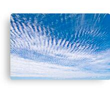 Angel wings Canvas Print