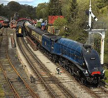 Sir Nigel Gresley at Goathland by MartinWilliams