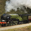 Tornado 60163 by MartinWilliams