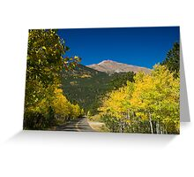 The Road Of Life Greeting Card