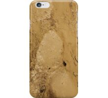 MUD ABSTRACT  iPhone Case/Skin