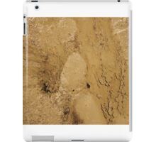 MUD ABSTRACT  iPad Case/Skin