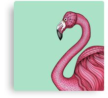 Pink Flamingo on Turquoise Background Canvas Print