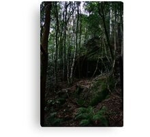 cave in the valley  Canvas Print