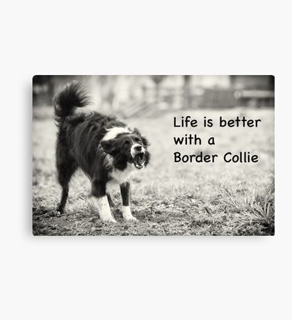 Life is better Canvas Print