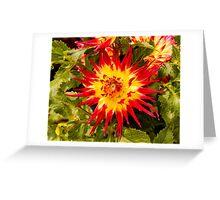 Dahlia In Bloom 4 Greeting Card