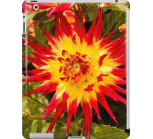 Dahlia In Bloom 4 iPad Case/Skin