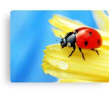 A bright little lady.. Canvas Print