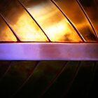 hull at sunset by greg angus