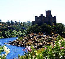 Castelo de Almourol - Almourol Castle by Sérgio Grilo