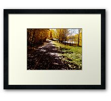 Just A Closer Walk  Framed Print