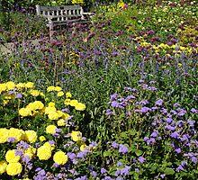 Peace in a Garden by dawnsten