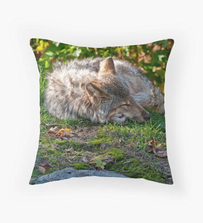 Sleep Well my Friend Throw Pillow