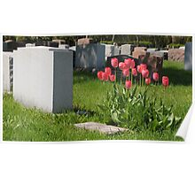 Tulips on a Tomb Poster
