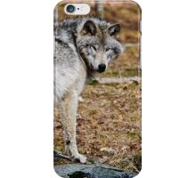 Timberwolf  iPhone Case/Skin