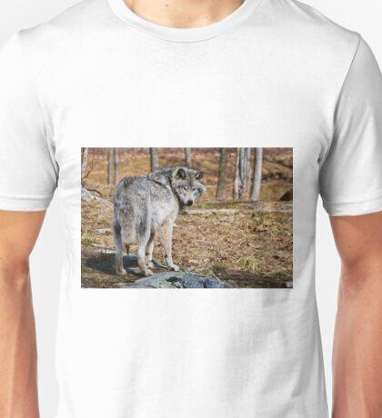 Timberwolf  Unisex T-Shirt