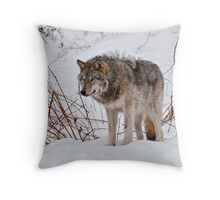 Lone Wolf - 2 Throw Pillow