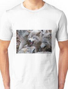 Do you get it now! T-Shirt