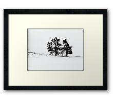 Trees, Field, Snow...Fenelon Falls 2010 Framed Print