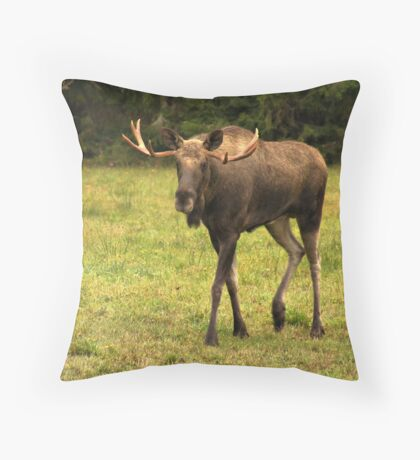 Magnus Moose Throw Pillow