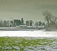 An Unexpected Snow Shower by Ian Leyland