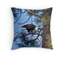 Bald Eagle near Sweathouse Creek Throw Pillow