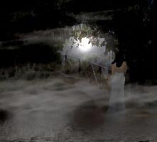 misty moonlight by Bibi03