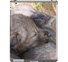 Furry Pillow iPad Case/Skin