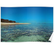 Lady Musgrave Coral Island Poster