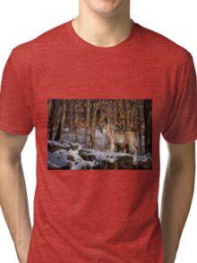 Timber Wolf Tri-blend T-Shirt