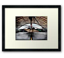 blackhawk Framed Print