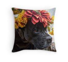 Bella - The Pensive Pitbull Throw Pillow