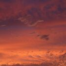 Sunset 2 by PurpleDonna