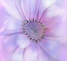 Precious Flower.... by Sharon House