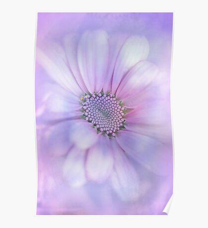Precious Flower.... Poster