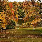 Lakeside by Sandy Keeton