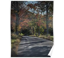 Hayfield Road (looking downhill) Poster