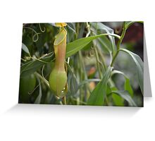 Pitcher Plant or Pokemon? Greeting Card