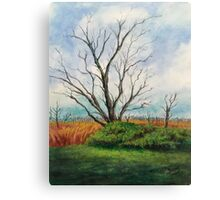 The Elm and The Red Bird Canvas Print
