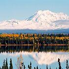 Mount Drum (Alaska) by Juergen Weiss