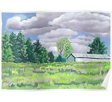 Field and trees Landscape Poster