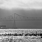 Astoria Bridge by Robin  Koster